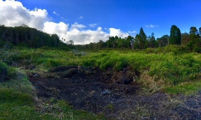 N Glenwood Road, Mountain View, HI 96771 (MLS #613810) :: Aloha Kona Realty, Inc.
