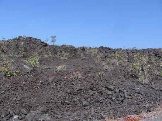 Menehune Dr, Ocean View, HI 96737 (MLS #614013) :: Aloha Kona Realty, Inc.
