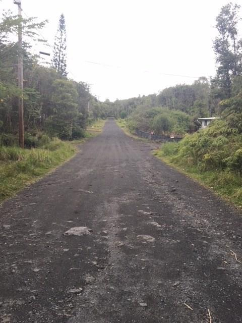 Palm Tree Dr, Mountain View, HI 96771 (MLS #614134) :: Aloha Kona Realty, Inc.