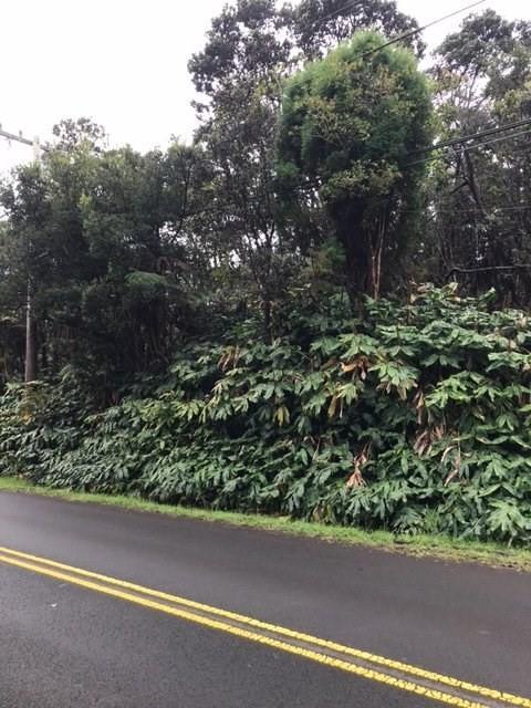 Wright Rd, Volcano, HI 96785 (MLS #614347) :: Aloha Kona Realty, Inc.