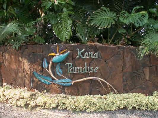 Ama Rd, Captain Cook, HI 96704 (MLS #614370) :: Aloha Kona Realty, Inc.