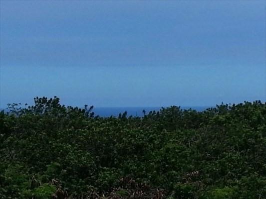 94-6263 Pele St, Naalehu, HI 96772 (MLS #614622) :: Elite Pacific Properties