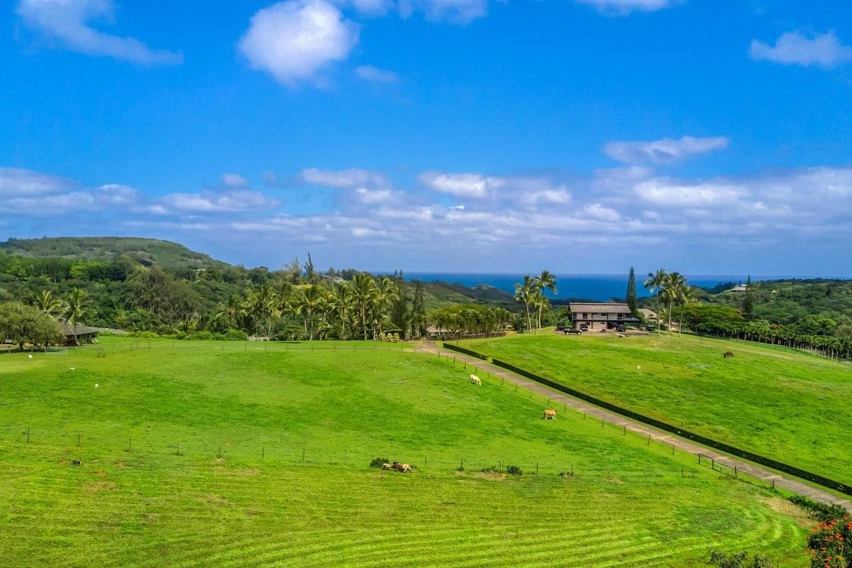 https://bt-photos.global.ssl.fastly.net/hawaii/orig_boomver_1_615092-2.jpg