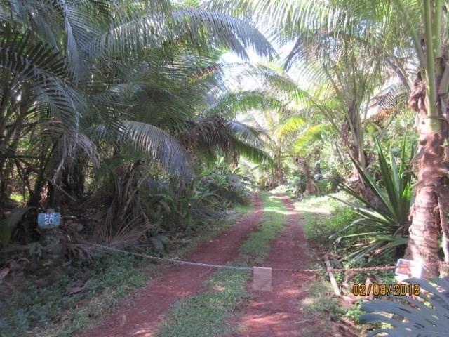 14-3720 Government Beach Rd, Pahoa, HI 96778 (MLS #615116) :: Aloha Kona Realty, Inc.