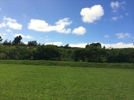 54-3730 Lehuula Cir, Kapaau, HI 96755 (MLS #615154) :: Elite Pacific Properties
