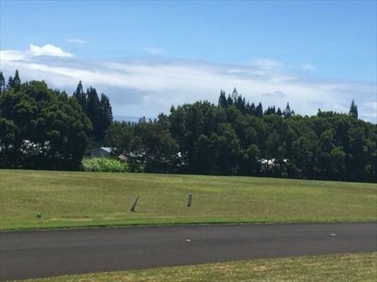 54-3705 Lehuula Cir, Kapaau, HI 96755 (MLS #615155) :: Elite Pacific Properties