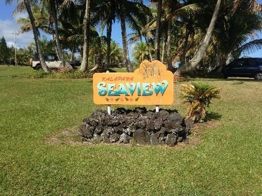 Mapuana Avenue, Pahoa, HI 96778 (MLS #615235) :: Aloha Kona Realty, Inc.
