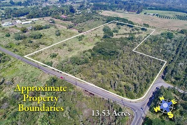 Address Not Published, Kurtistown, HI 96760 (MLS #615251) :: Elite Pacific Properties