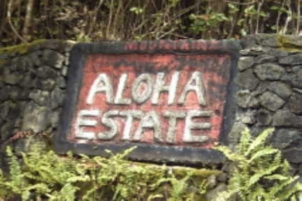Address Not Published, Volcano, HI 96785 (MLS #615356) :: Elite Pacific Properties
