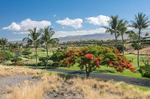 62-3918 Kaunaoa Iki Rd, Kamuela, HI 96743 (MLS #615387) :: Aloha Kona Realty, Inc.