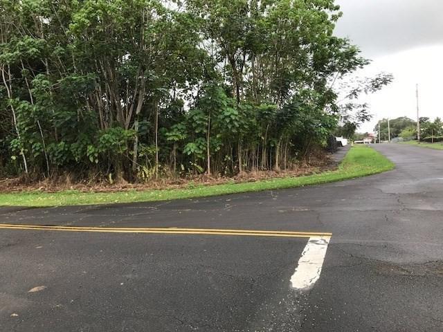 Uhiuhi Lp, Keaau, HI 96749 (MLS #615467) :: Elite Pacific Properties