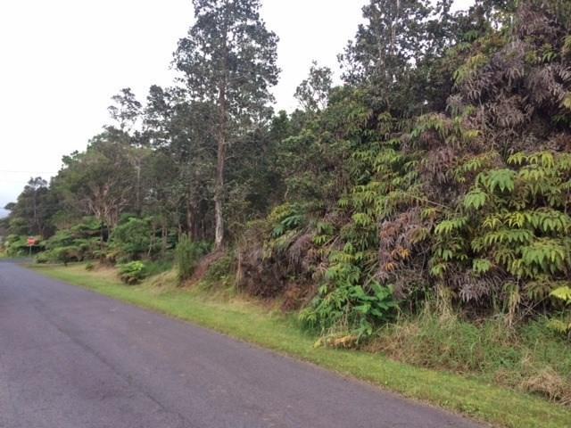 11-3355 Pa Alii St, Volcano, HI 96785 (MLS #615684) :: Elite Pacific Properties