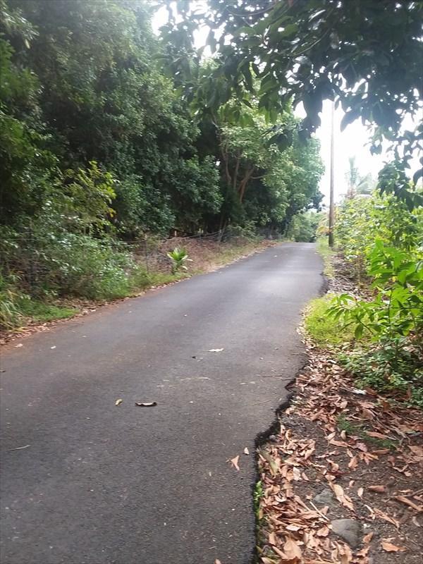 83-5659 Rock Bottom Road, Captain Cook, HI 96704 (MLS #615735) :: Elite Pacific Properties
