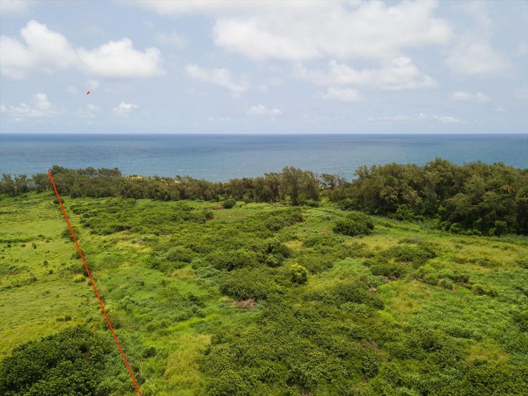https://bt-photos.global.ssl.fastly.net/hawaii/orig_boomver_1_615808-2.jpg