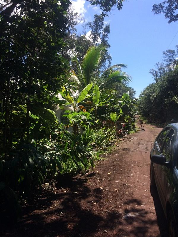Address Not Published, Pahoa, HI 96778 (MLS #615906) :: Aloha Kona Realty, Inc.