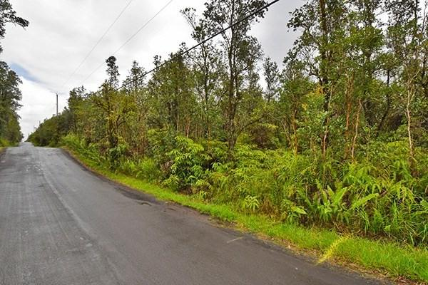 Address Not Published, Mountain View, HI 96771 (MLS #616212) :: Elite Pacific Properties