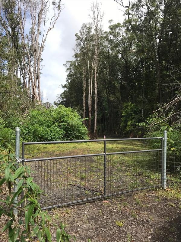 Address Not Published, Kurtistown, HI 96760 (MLS #616224) :: Aloha Kona Realty, Inc.