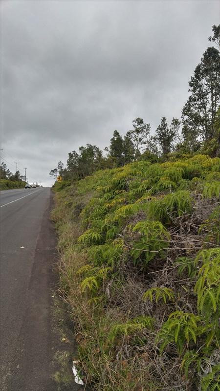 11-3222 Volcano Rd, Volcano, HI 96785 (MLS #616238) :: Elite Pacific Properties