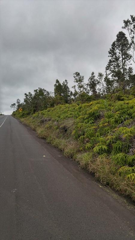 11-3220 Volcano Rd, Volcano, HI 96785 (MLS #616239) :: Elite Pacific Properties