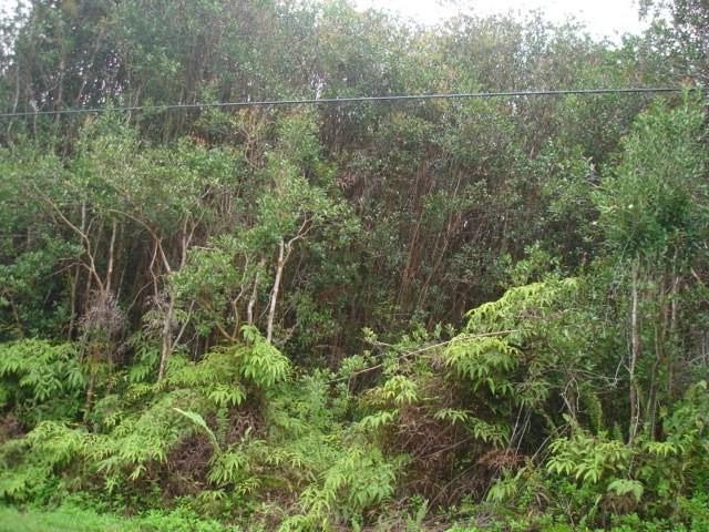 40TH AVE, Keaau, HI 96749 (MLS #616365) :: Aloha Kona Realty, Inc.