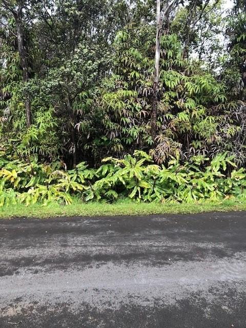 Liona, Volcano, HI 96785 (MLS #616610) :: Elite Pacific Properties