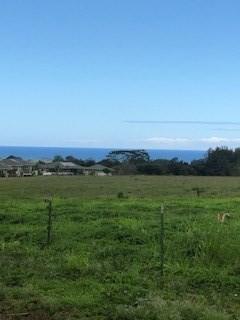 Hauiki Rd, Kapaa, HI 96746 (MLS #616654) :: Elite Pacific Properties