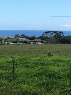 Hauiki Rd, Kapaa, HI 96746 (MLS #616656) :: Elite Pacific Properties