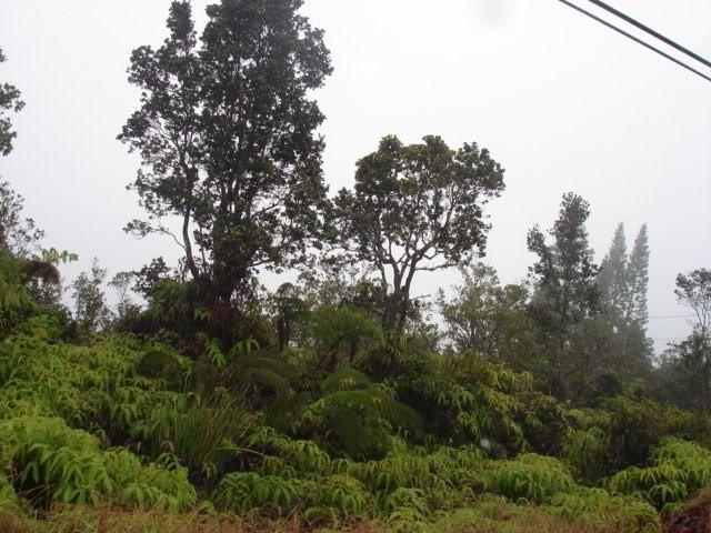 Volcano Rd, Volcano, HI 96785 (MLS #616813) :: Elite Pacific Properties