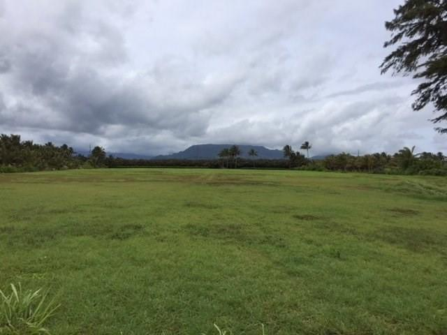 Kapoli St, Kealia, HI 96751 (MLS #617269) :: Kauai Exclusive Realty