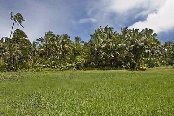 Address Not Published, Hilo, HI 96720 (MLS #617270) :: Aloha Kona Realty, Inc.