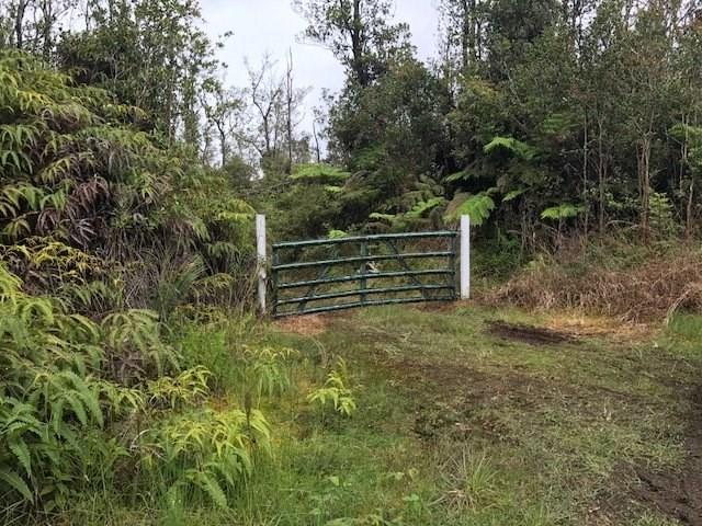 11-2916 Noe Kuahiwi Rd, Volcano, HI 96785 (MLS #617346) :: Aloha Kona Realty, Inc.