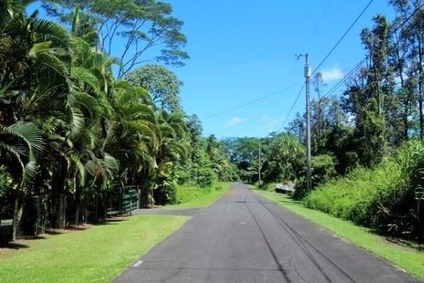 S Manini St, Pahoa, HI 96778 (MLS #617681) :: Aloha Kona Realty, Inc.