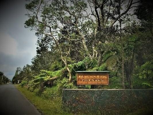 11-3857 7TH ST, Volcano, HI 96785 (MLS #617987) :: Elite Pacific Properties
