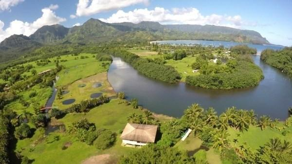 5 Hanalei Plantation Rd, Hanalei, HI 96714 (MLS #618177) :: Elite Pacific Properties