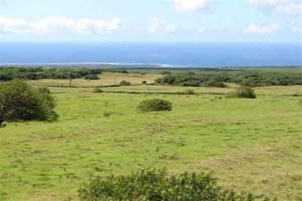 Kamaoa Rd, Naalehu, HI 96772 (MLS #618224) :: Aloha Kona Realty, Inc.