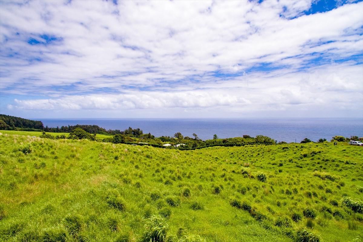 36-3358 Kuwili Lani Place - Photo 1