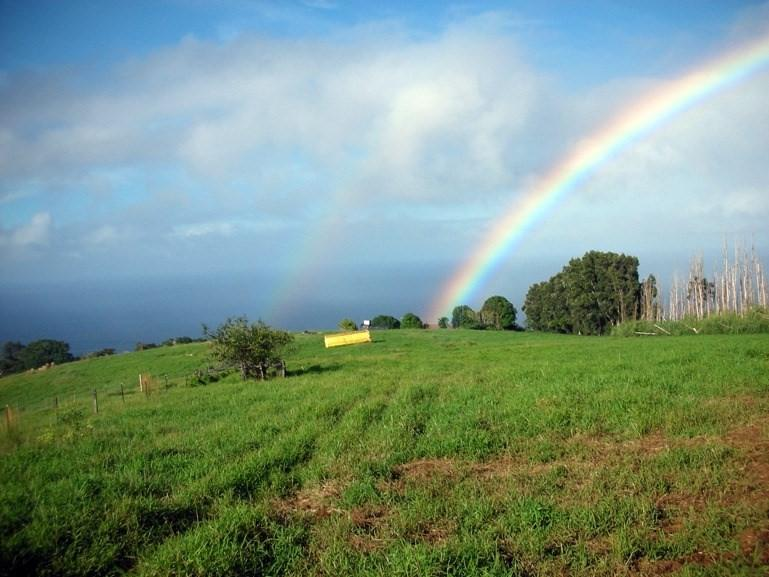 https://bt-photos.global.ssl.fastly.net/hawaii/orig_boomver_1_618354-2.jpg