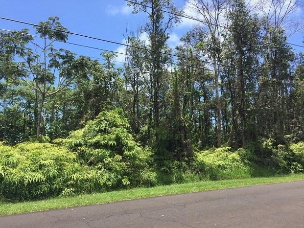 S Maikoiko St, Pahoa, HI 96778 (MLS #618565) :: Aloha Kona Realty, Inc.
