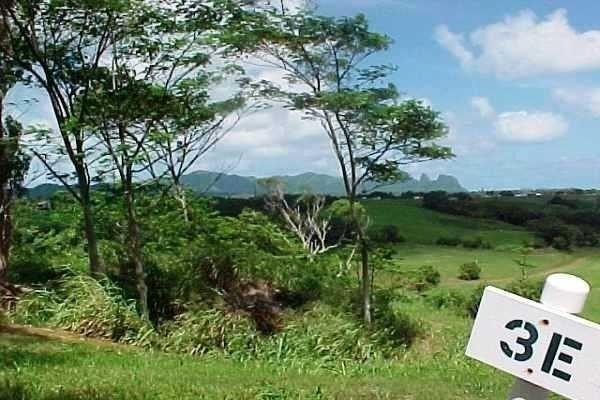 3-E Kulana Place, Kapaa, HI 96746 (MLS #619222) :: Kauai Exclusive Realty