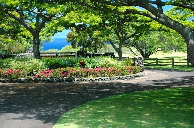 56-135 Pualani Road, Hawi, HI 96719 (MLS #619268) :: Elite Pacific Properties