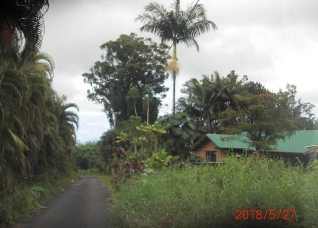 28-2695 Kahalono Road, Honomu, HI 96728 (MLS #619607) :: Aloha Kona Realty, Inc.