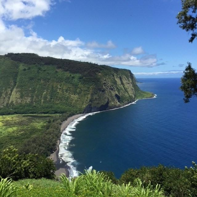 49-5792 Waipio Valley Rd, Honakaa, HI 96727 (MLS #619699) :: Aloha Kona Realty, Inc.