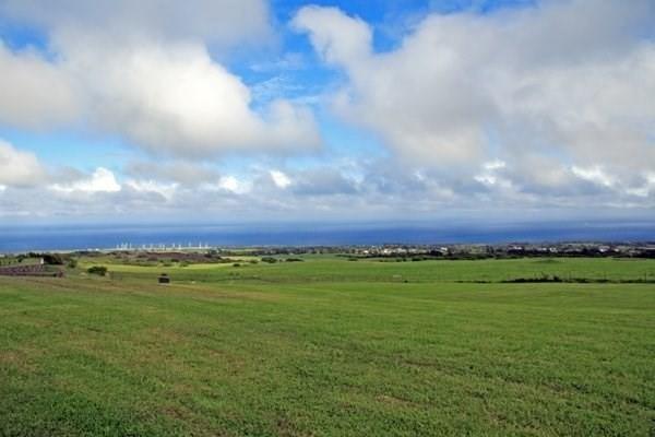 56-783 Kualapa Pl, Hawi, HI 96719 (MLS #619790) :: Aloha Kona Realty, Inc.