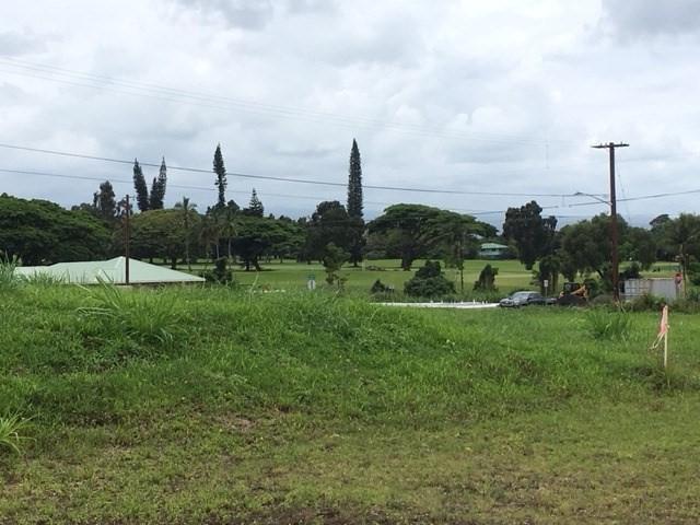 3008 Lou Street, Hilo, HI 96720 (MLS #620113) :: Song Real Estate Team/Keller Williams Realty Kauai