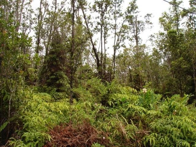 Kokokahi Rd, Volcano, HI 96785 (MLS #620127) :: Elite Pacific Properties