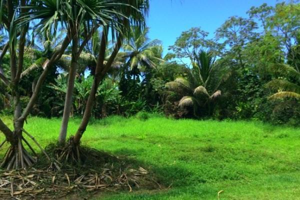 15-2819 Papai St, Pahoa, HI 96778 (MLS #620160) :: Elite Pacific Properties