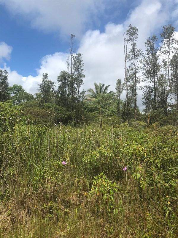 16-2048 Silversword Dr, Pahoa, HI 96778 (MLS #620279) :: Aloha Kona Realty, Inc.