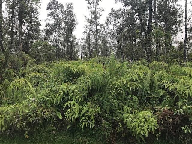 Sugarcane Ln, Pahoa, HI 96778 (MLS #620280) :: Aloha Kona Realty, Inc.
