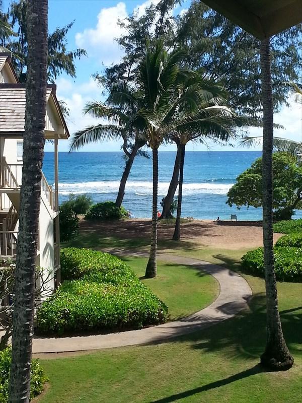 440 Aleka Pl, Kapaa, HI 96746 (MLS #620944) :: Elite Pacific Properties