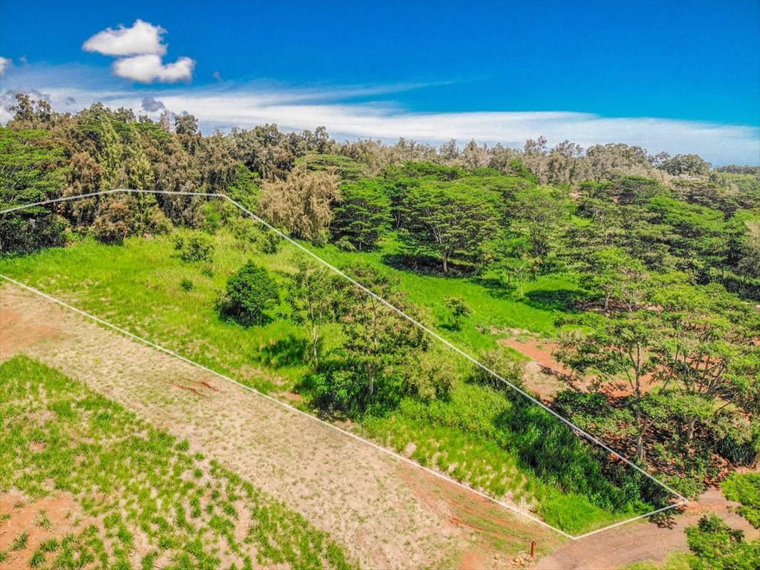 https://bt-photos.global.ssl.fastly.net/hawaii/orig_boomver_1_621083-2.jpg
